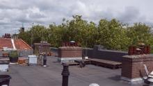 The shared rooftop. It provides a great space for growing plants & food. A place for the people in the building to connect